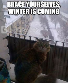 Winter is coming memes