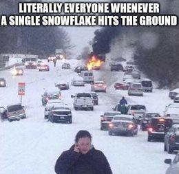 Snowflake memes
