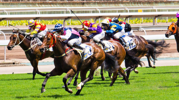 Dead-heat horse racing betting terminology non crypto currency exchange