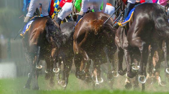 Cheltenham ante post betting 2021 honda states that allow sports betting